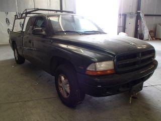 Dodge Dakota 1999