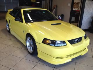 Used 2001 Ford Mustang in Charlotte, North Carolina