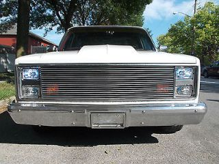 Chevrolet R/V 10 1987