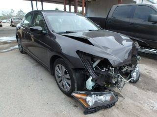 Used 2011 Honda Accord EXL in Riverview, Florida